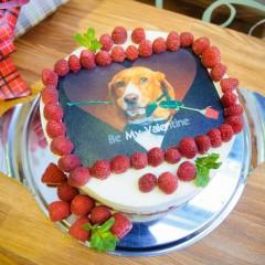Фотопечать на тортах